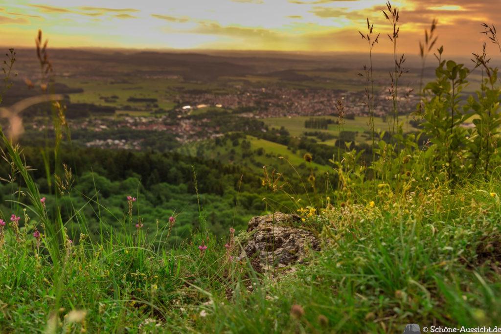 Traufgang Zollernburg-Panorama 43