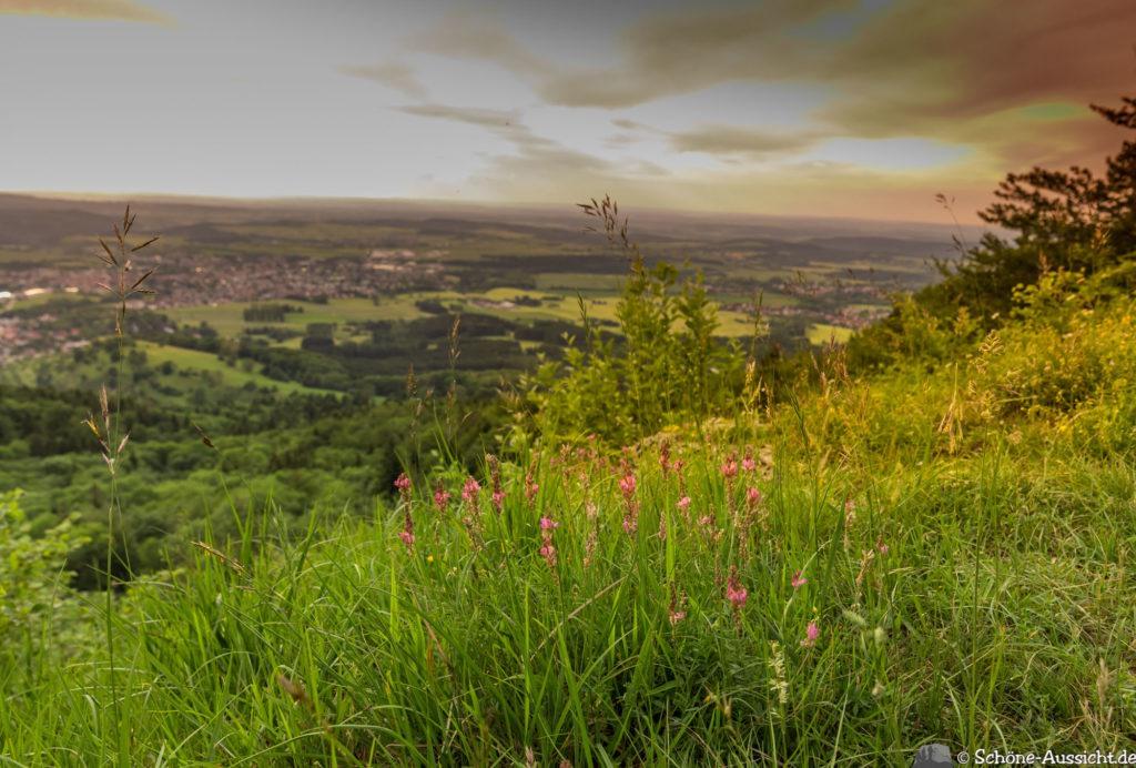 Traufgang Zollernburg-Panorama 42