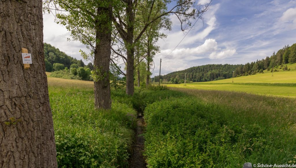 Traufgang Zollernburg-Panorama 60