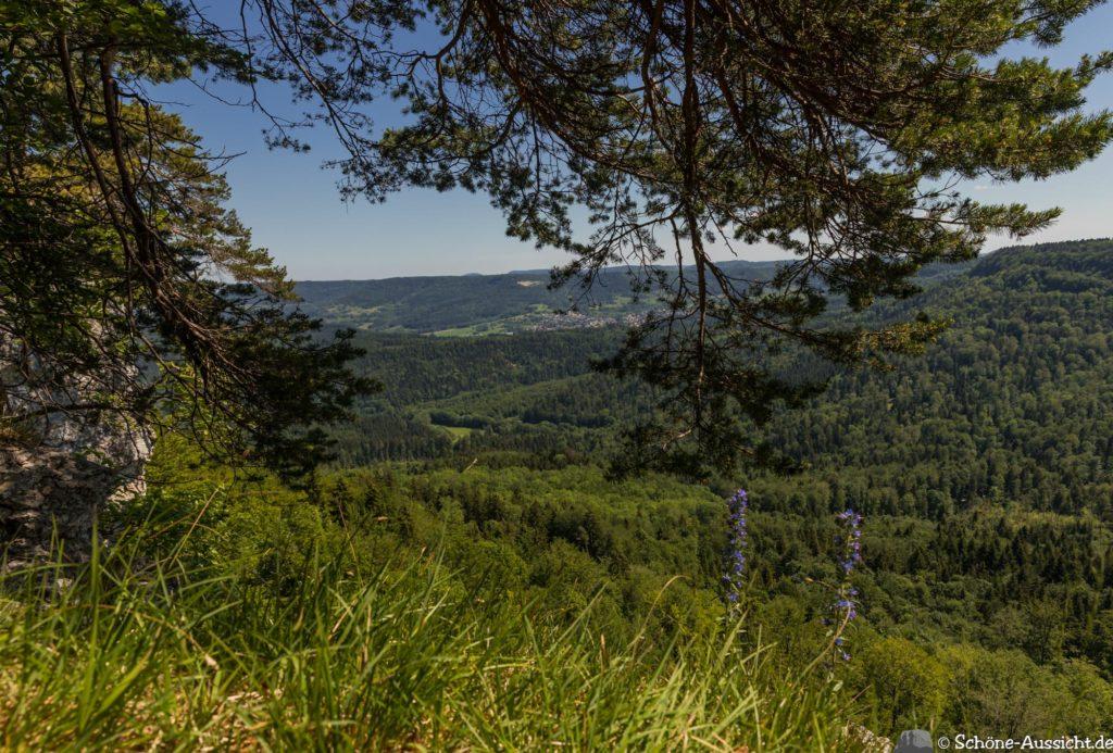Traufgang Zollernburg-Panorama 34
