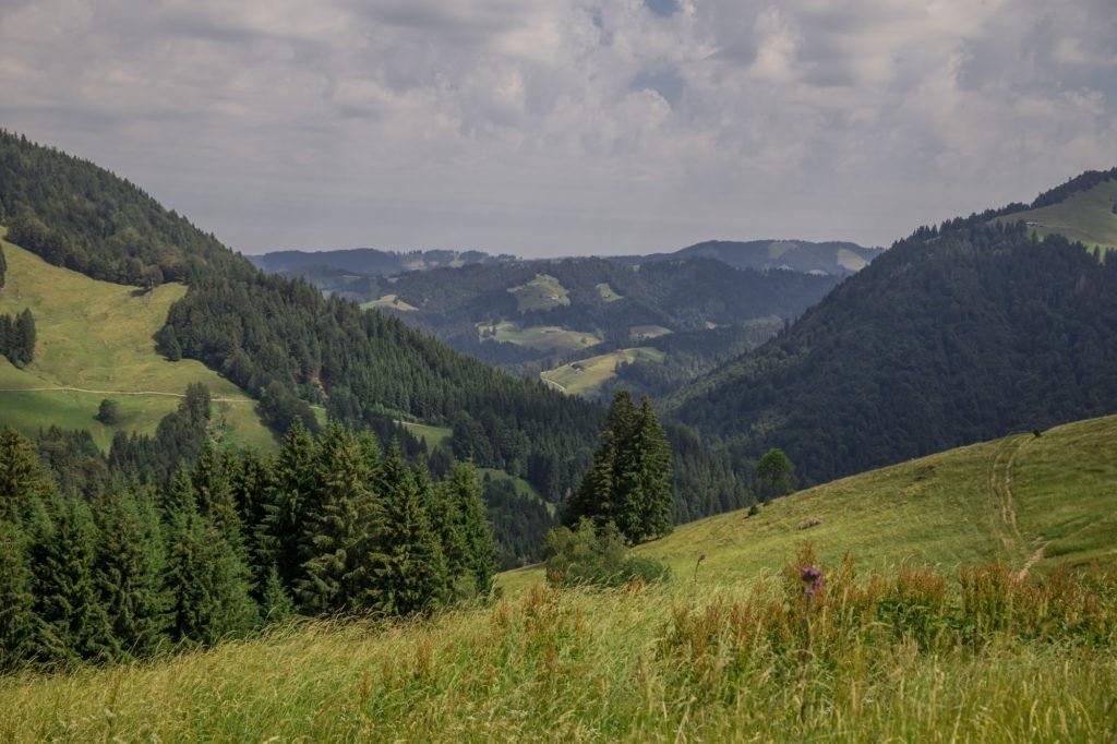 Alpenfreiheit Wanderung in Oberstaufen 27