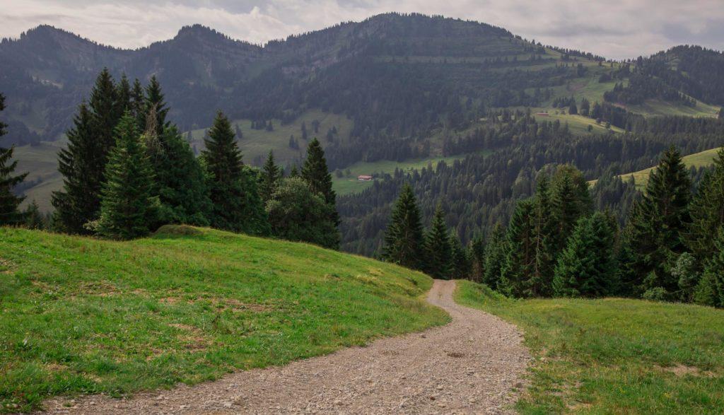 Alpenfreiheit Wanderung in Oberstaufen 12