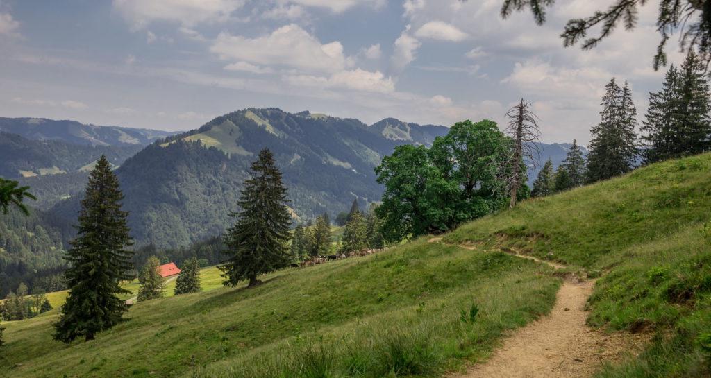 Alpenfreiheit Wanderung in Oberstaufen 33