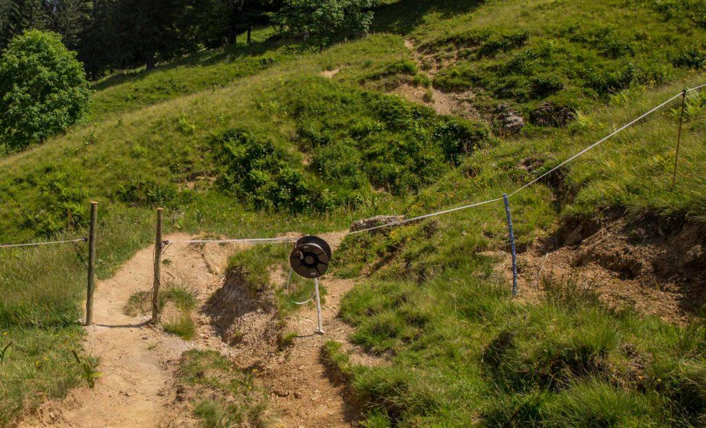 Alpenfreiheit Wanderung in Oberstaufen 37