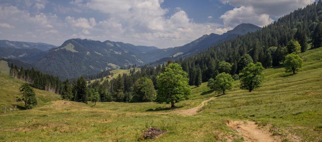 Alpenfreiheit Wanderung in Oberstaufen 11