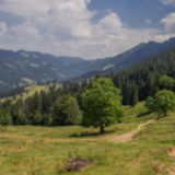 Alpenfreiheit Wanderung in Oberstaufen