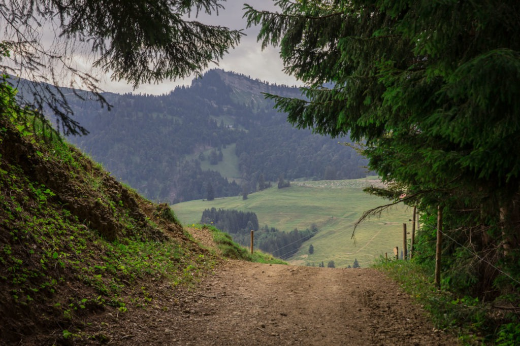 Alpenfreiheit Wanderung in Oberstaufen 13