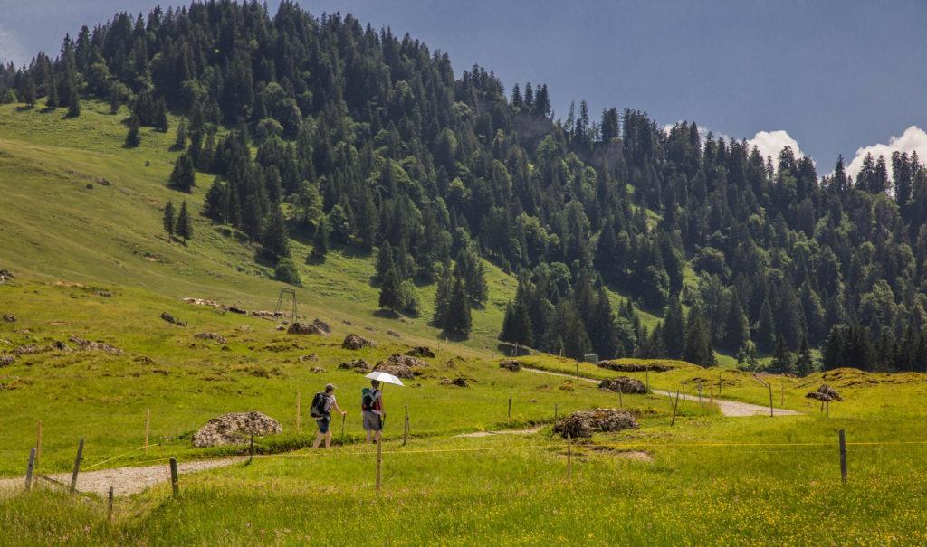 Alpenfreiheit Wanderung in Oberstaufen 44