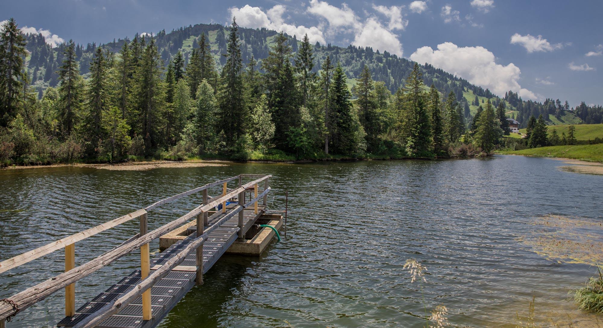 Dreikönigsmarsch am Starnberger See 1