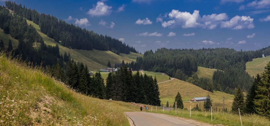 Alpenfreiheit Wanderung in Oberstaufen 9