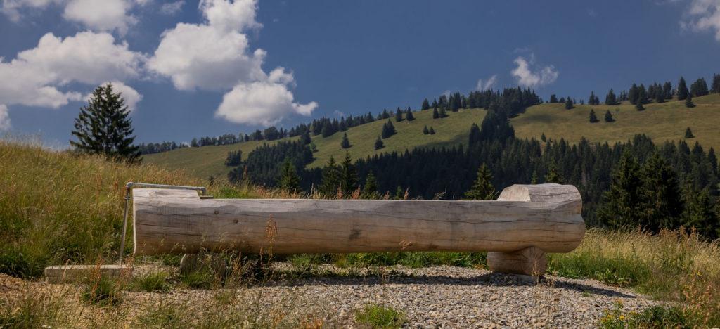 Alpenfreiheit Wanderung in Oberstaufen 52