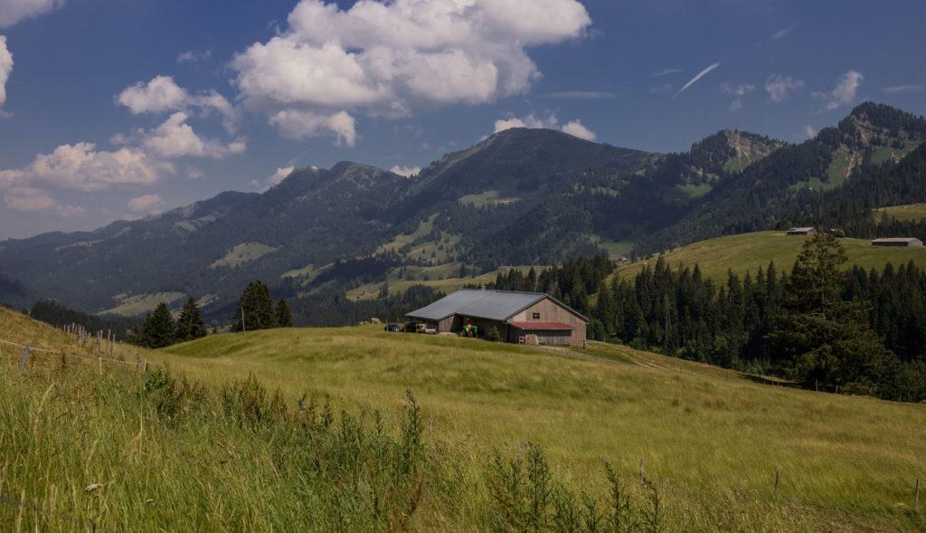 Alpenfreiheit Wanderung in Oberstaufen 53