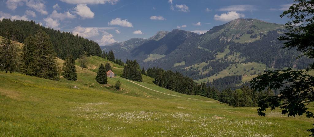 Alpenfreiheit Wanderung in Oberstaufen 56