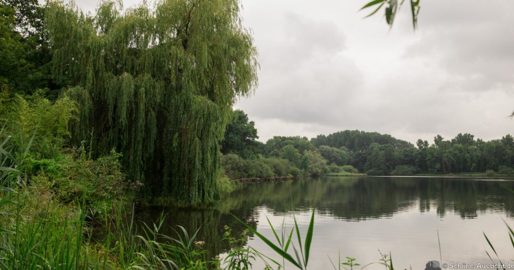 Nette Seen - Leichte Wanderung um 3 Seen in Schwalm-Nette 353