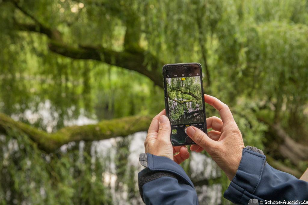 Nette Seen - Leichte Wanderung um 3 Seen in Schwalm-Nette 332