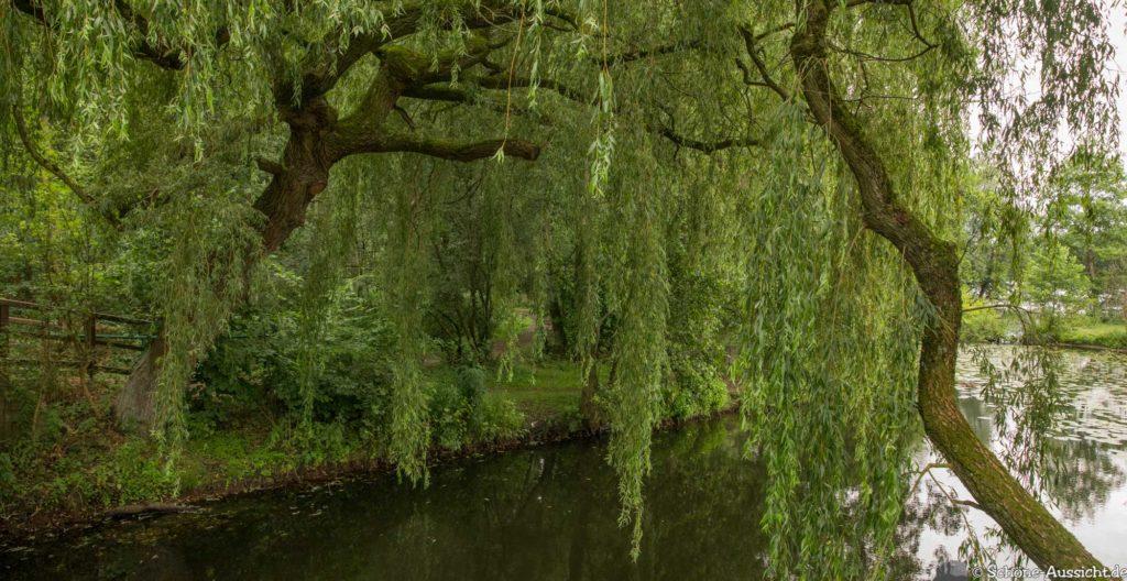 Nette Seen - Leichte Wanderung um 3 Seen in Schwalm-Nette 333