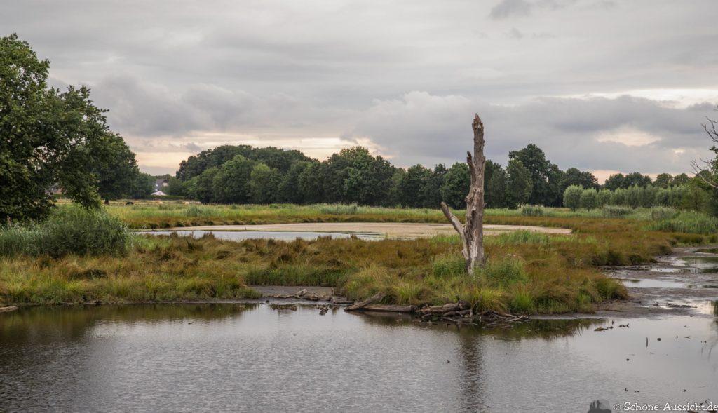 Nette Seen - Leichte Wanderung um 3 Seen in Schwalm-Nette 331