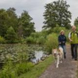 Nette-Seen – Leichte Wanderung um 3 Seen in Schwalm-Nette