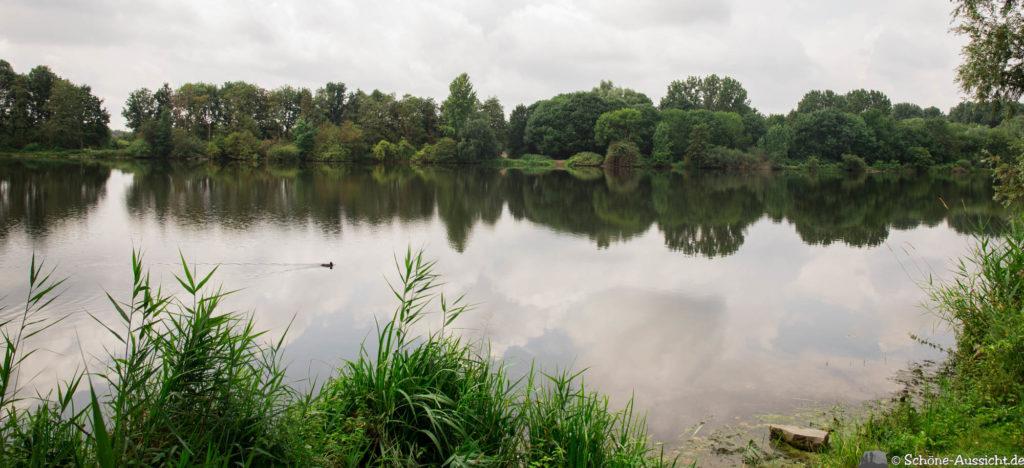 Nette Seen - Leichte Wanderung um 3 Seen in Schwalm-Nette 8