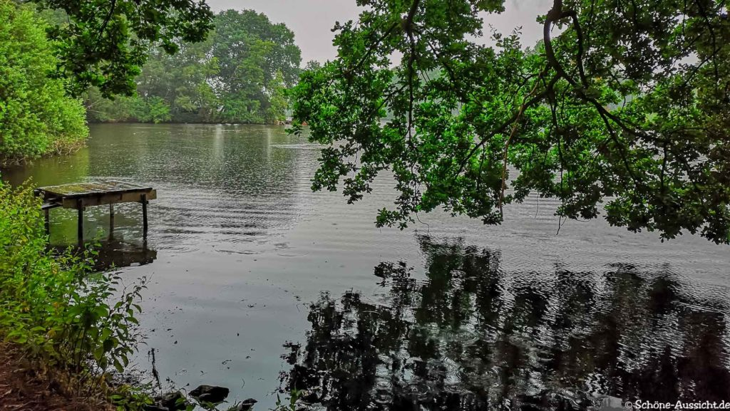 Nette Seen - Leichte Wanderung um 3 Seen in Schwalm-Nette 313