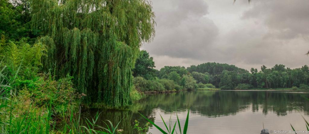 Nette Seen - Leichte Wanderung um 3 Seen in Schwalm-Nette 325