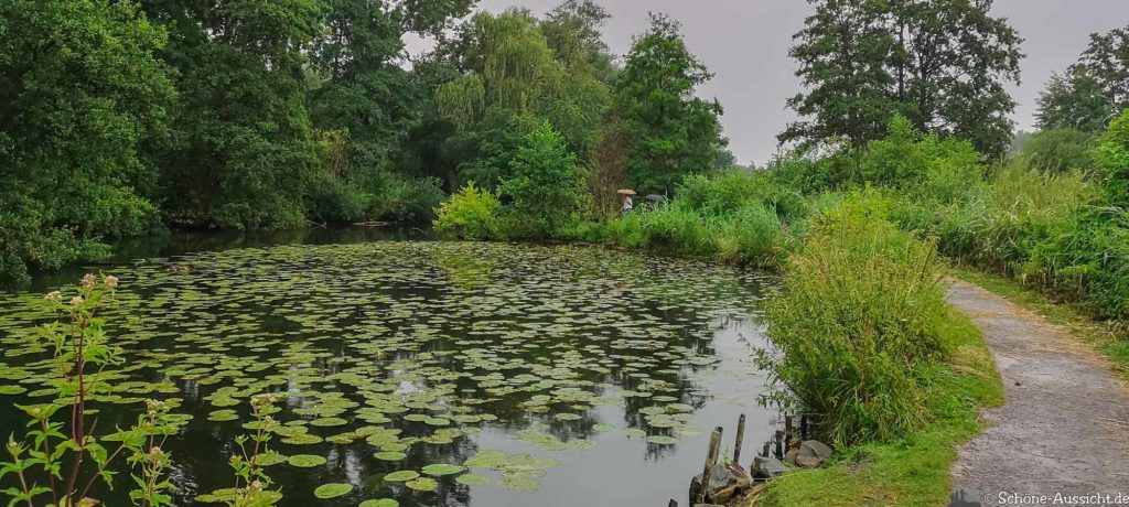 Nette Seen - Leichte Wanderung um 3 Seen in Schwalm-Nette 319