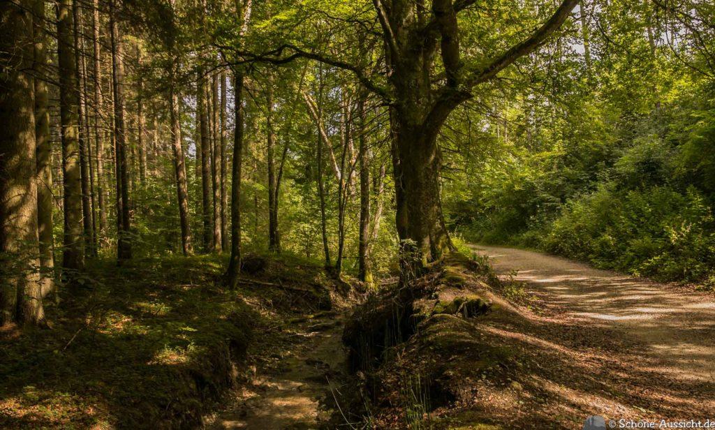 Hossinger Leiter - Ein Traufgang mit Weitblicken 21