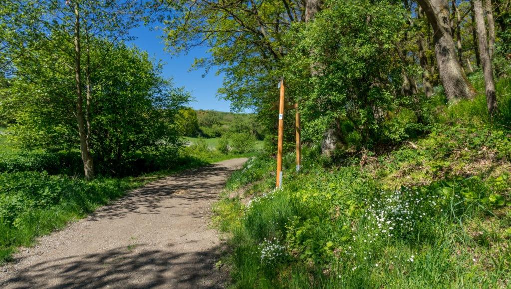 Paradiesweg Polch 167