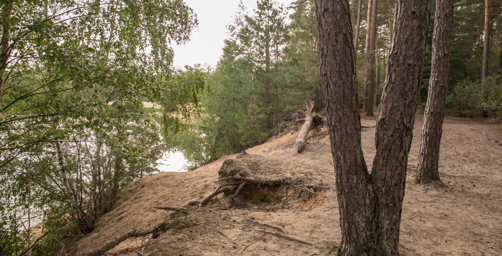 Sloopsteener Seerunde 5