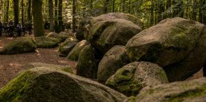 Der Diemelsteig - Uriger Wanderweg am Diemelsee 78