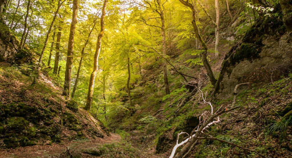 Hossinger Leiter - Ein Traufgang mit Weitblicken 7