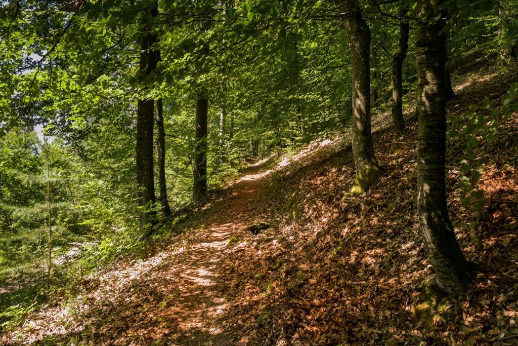 Rumberg-Steig 26