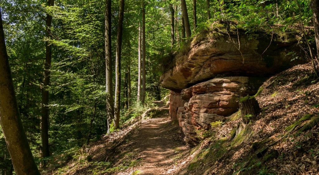 Rumberg-Steig 6