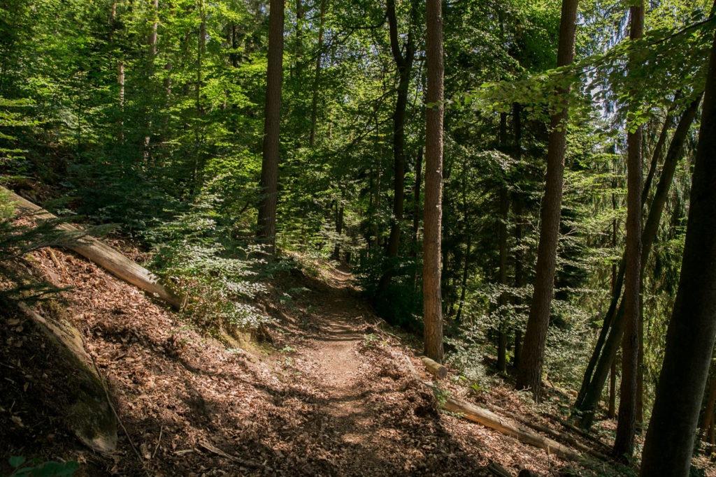 Rumberg-Steig 23