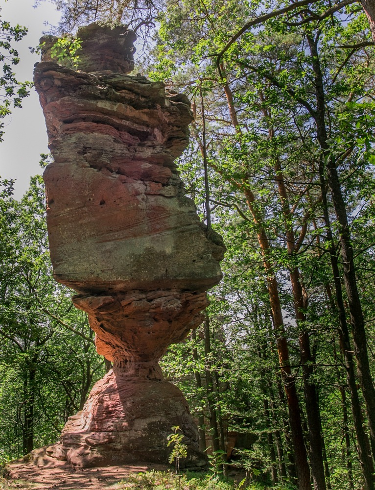 Rumberg-Steig 19