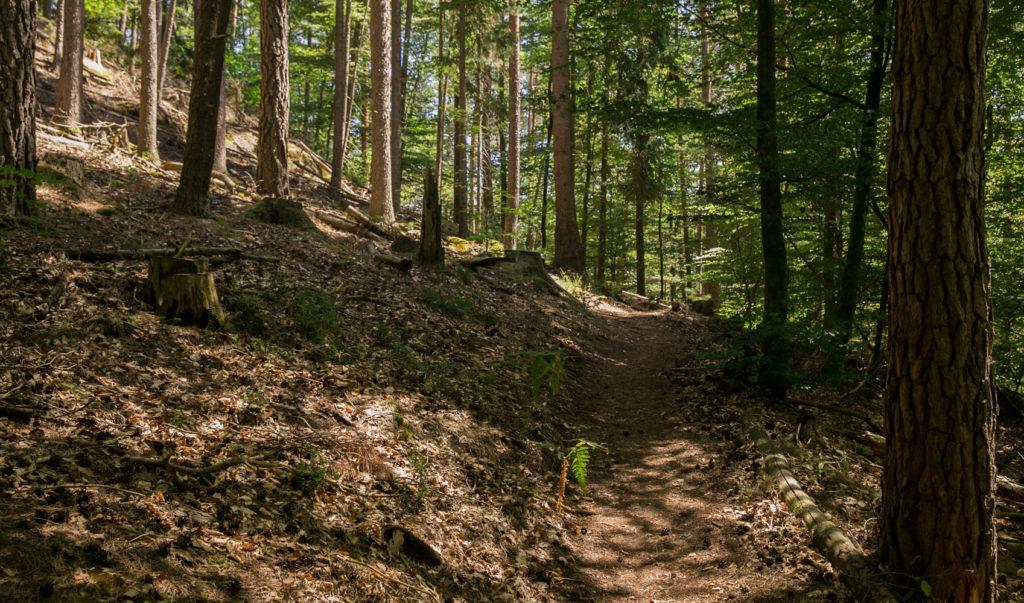 Rumberg-Steig 17