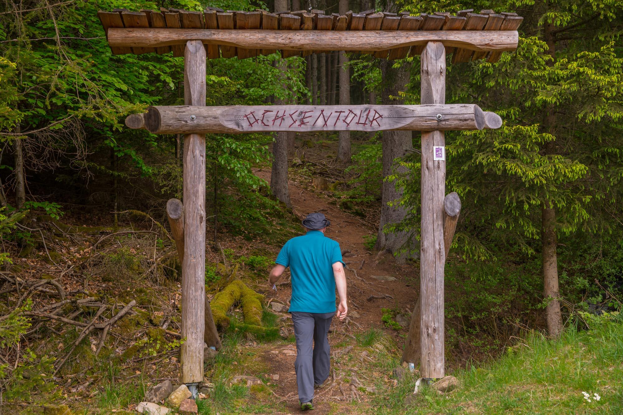 24 Stunden durch den Nationalpark Hunsrück - Hochwald 1
