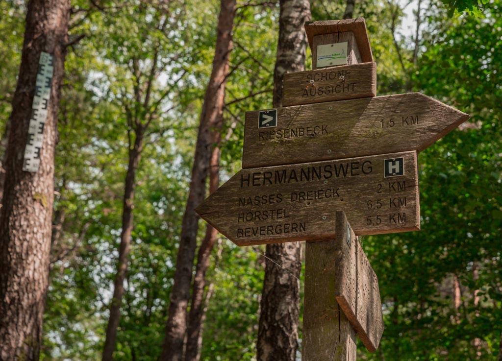 Waldauenweg 41