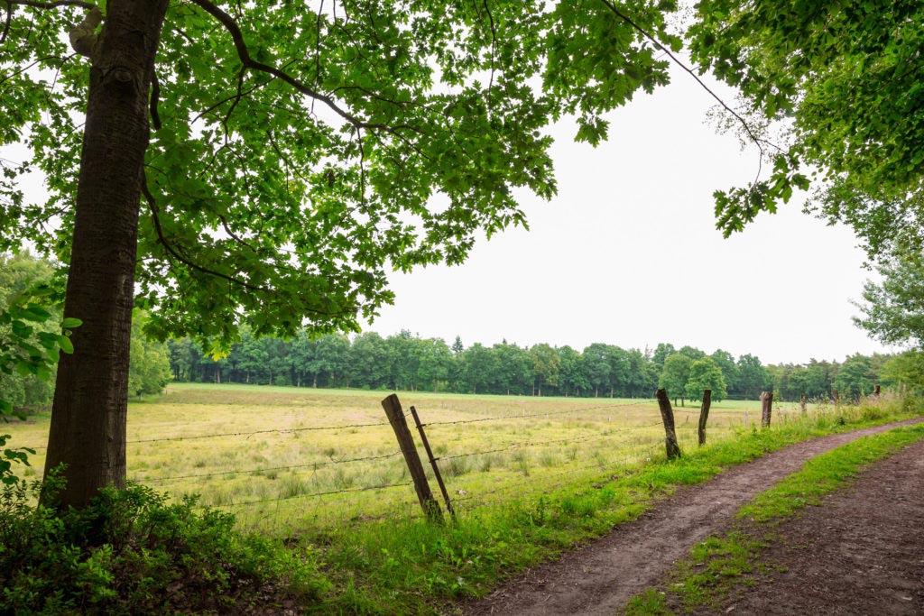 Waldauenweg 57