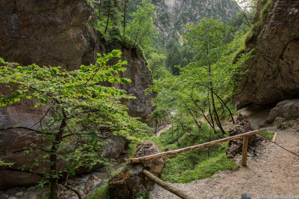 Soca-Trail 29