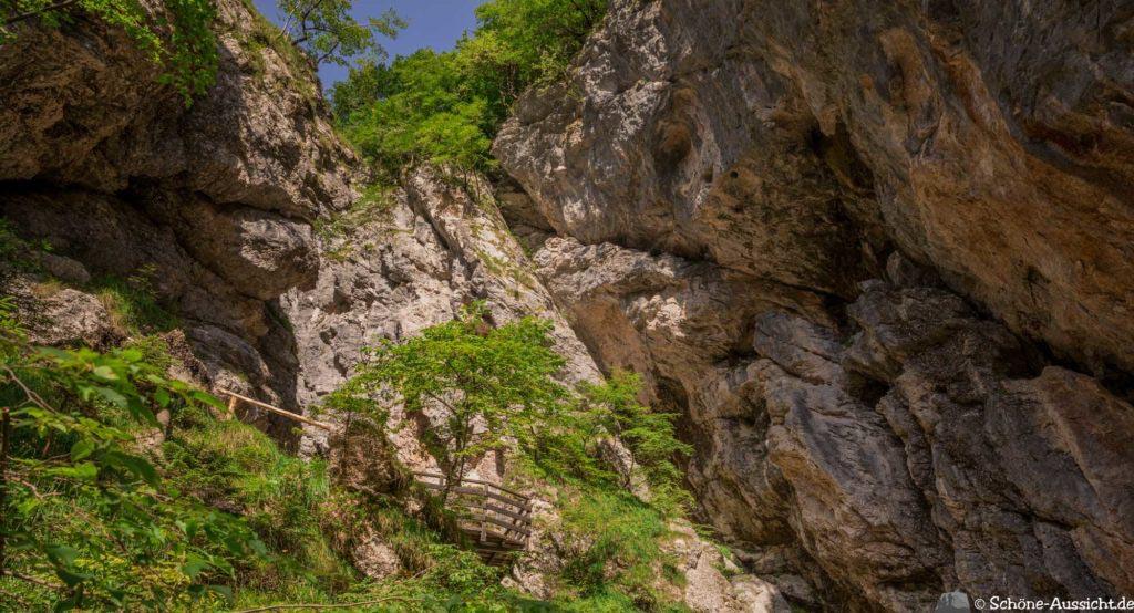 Soca-Trail 31