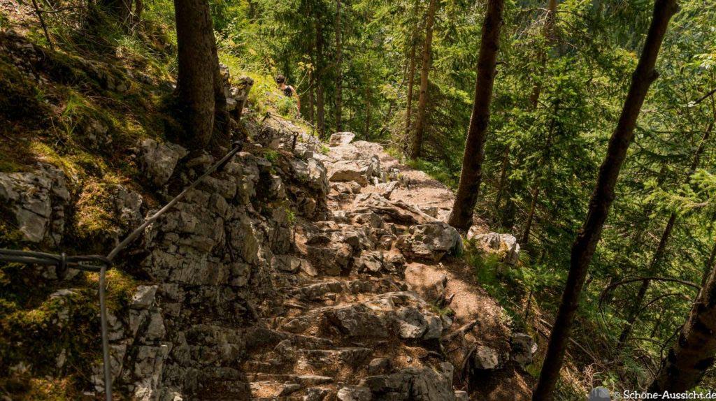 Soca-Trail 23