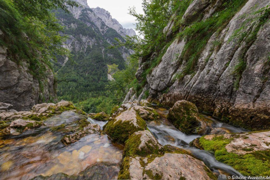Soca-Trail 20