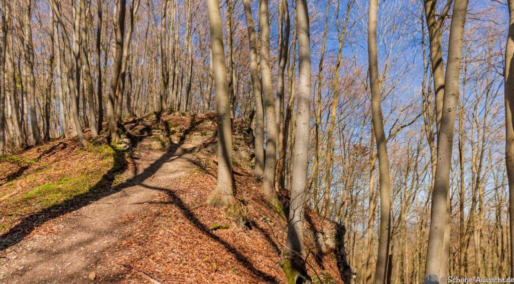 Werra-Burgen-Steig Hessen 253