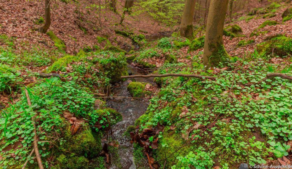 Werra-Burgen-Steig Hessen 189