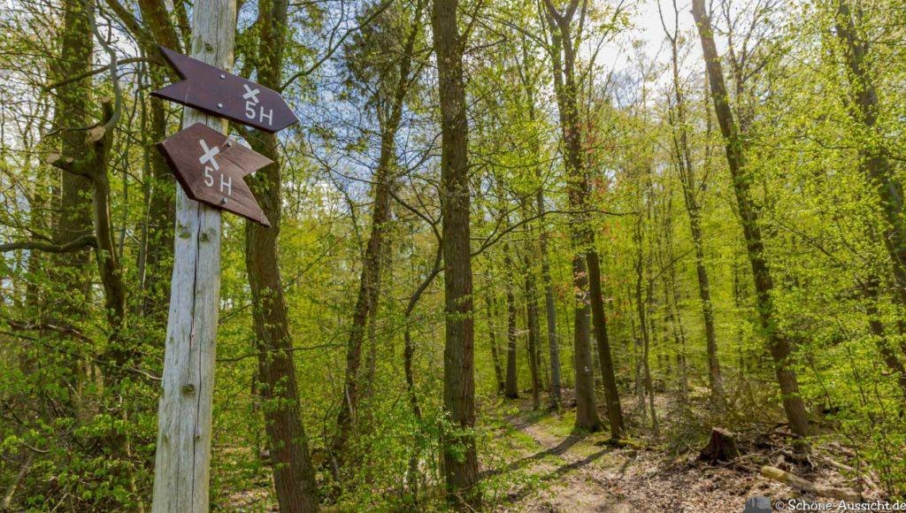 Werra-Burgen-Steig Hessen 205