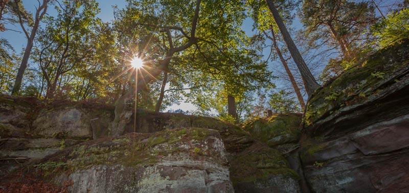 Der Altschloßpfad zum Altschloßfelsen - Unverhofft beeindruckend 124