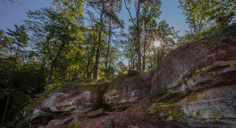 Der Altschloßpfad zum Altschloßfelsen - Unverhofft beeindruckend 125