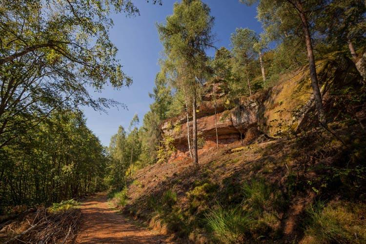 Der Altschloßpfad zum Altschloßfelsen - Unverhofft beeindruckend 137