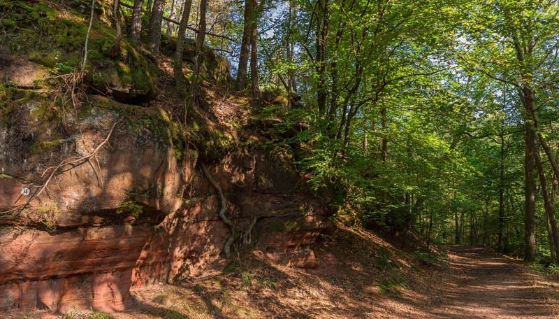 Der Altschloßpfad zum Altschloßfelsen - Unverhofft beeindruckend 116